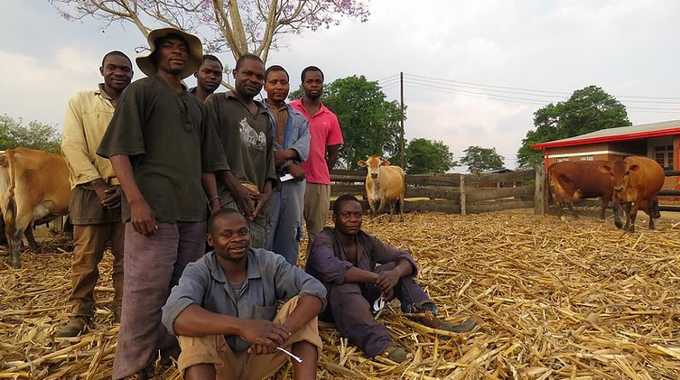 kondanani_farm2